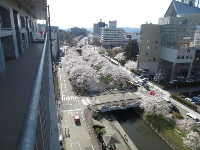 アパマートマンスリー富山駅南 桜木町 1LDK写真4